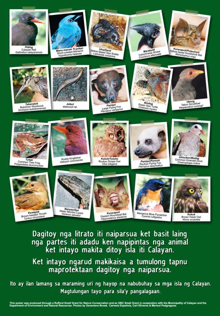 Biodiversity Poster